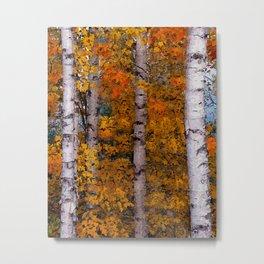 Birch Trees #2 Metal Print
