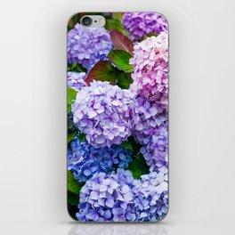 Purple Hydrangeas iPhone Skin
