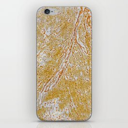 Rust Flowers 2 iPhone Skin