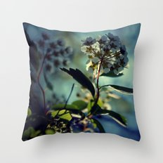 A change of pace Throw Pillow
