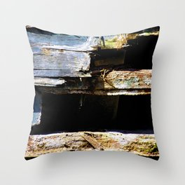 Battered House Boat 2 Throw Pillow