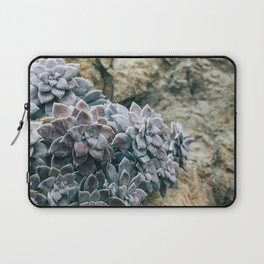 Botanical Gardens II - Succulents #557 Laptop Sleeve