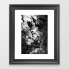 Faded Streams  Framed Art Print