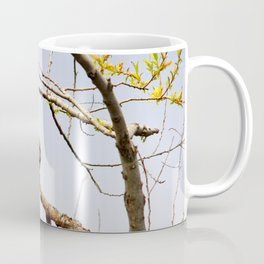 Perched Tufted Titmouse Coffee Mug