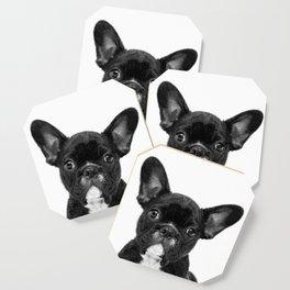 Black and White French Bulldog Coaster
