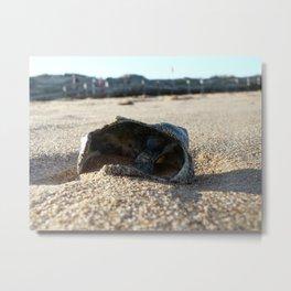 Shipwrecked Shell Metal Print