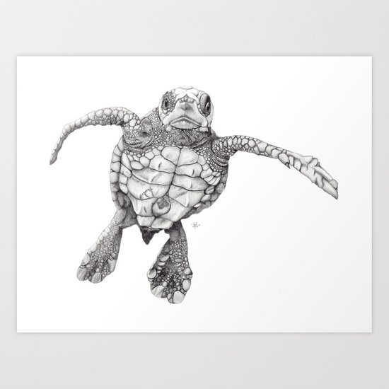 Chelonioidea (the turtle) Art Print