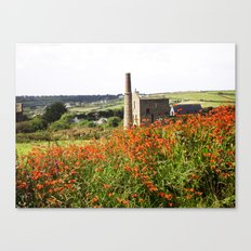 Castle In The Fields Canvas Print