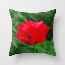 Red oriental poppy flower Throw Pillow