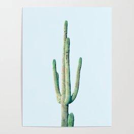 Loner Cactus #society6 #decor #buyart Poster