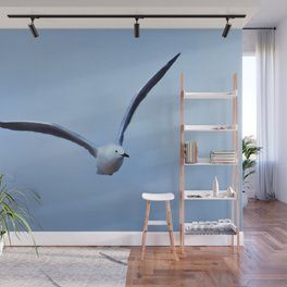 Seagull in flight Wall Mural