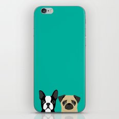 B Terrier & Pug iPhone & iPod Skin