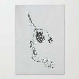 vine sketch Canvas Print