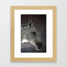 stoic Framed Art Print