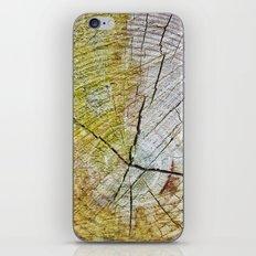 Tree rings iPhone & iPod Skin