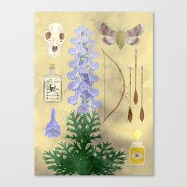 Aconitum / wolf's bane Canvas Print