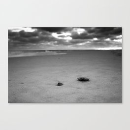 CRAB SHELL ON THE SAND Canvas Print