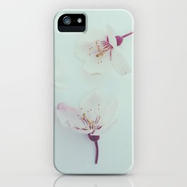 Hanami 2 iPhone Case