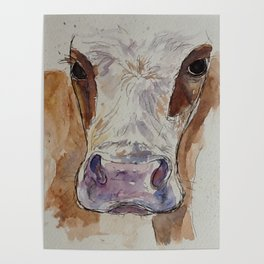 Ayrshire cow painting Poster