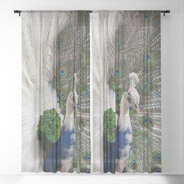 Blue White Peacock Sheer Curtain