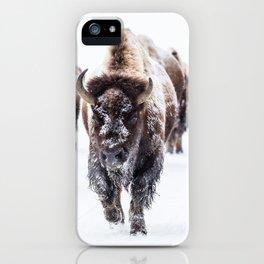 Bison Herd Through The Snow iPhone Case