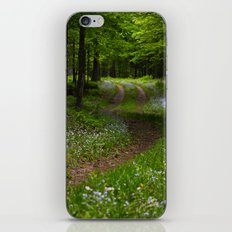 Forget-me-not Trail iPhone & iPod Skin
