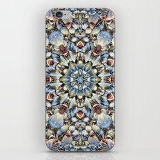 Seashell Kaleidoscope iPhone & iPod Skin