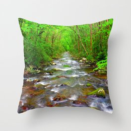 Smokey Mountain River Throw Pillow
