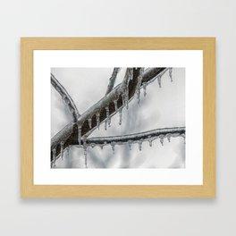 Icy Branch Framed Art Print