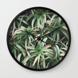 Aloe, mate. Wall Clock