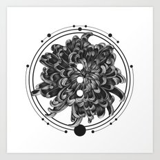Elliptical III Art Print