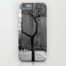Tree in Madrid iPhone 6s Slim Case