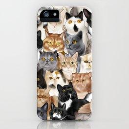 Catmina 2017 - FIVE iPhone Case