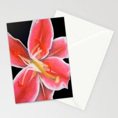 Mother Natures Finest Stationery Cards
