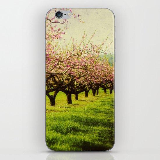 Orchard Lane iPhone & iPod Skin
