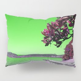 Tropical Beach with Wooden Boats in Green Pillow Sham
