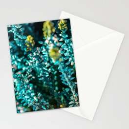 Blue Macro Flower Stationery Cards