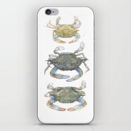 Blue Crabs iPhone Skin