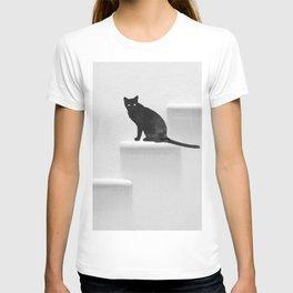 Black cat on steps T-shirt