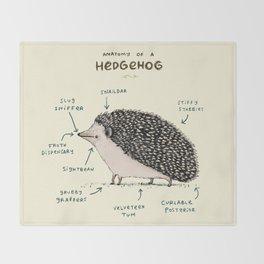 Anatomy of a Hedgehog Throw Blanket