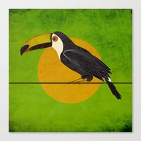toucan Canvas Prints featuring toucan by John Beswick