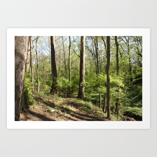 Another trail leading nowhere, including litter this time Art Print