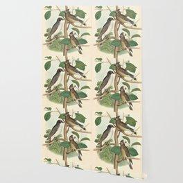 Naturalist Birds Wallpaper
