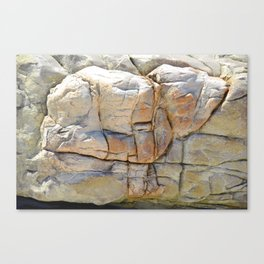 Cosy Lamb Rock Canvas Print