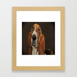 Lost In Thought Basset Hound Dog Framed Art Print