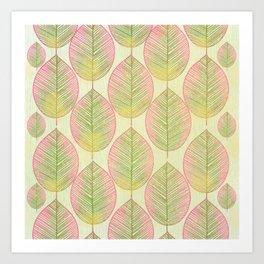 Tropical Palm Fan Leaf Art Print