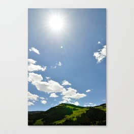 Alive and Well Canvas Print