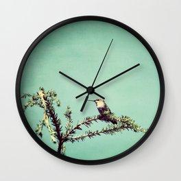 Hummingbird at rest Wall Clock