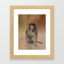 Brown Monkey in Bhutan Framed Art Print