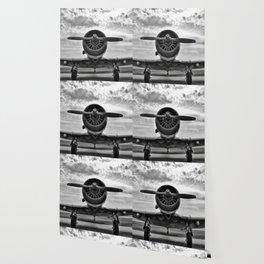 Warbird BW Wallpaper